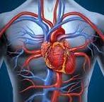 heart edit
